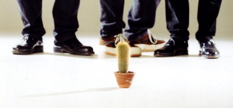 Gruppe + Kaktus klein.jpg